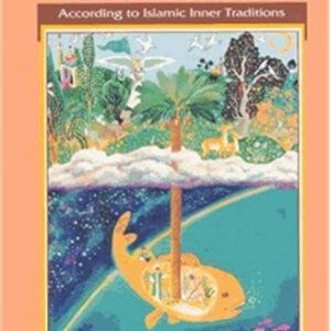 Ibn Seerin's Dictionary of Dreams - Reesh | Kiddies Book Store